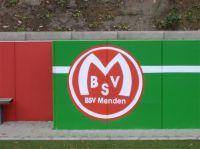 BSV logo 01